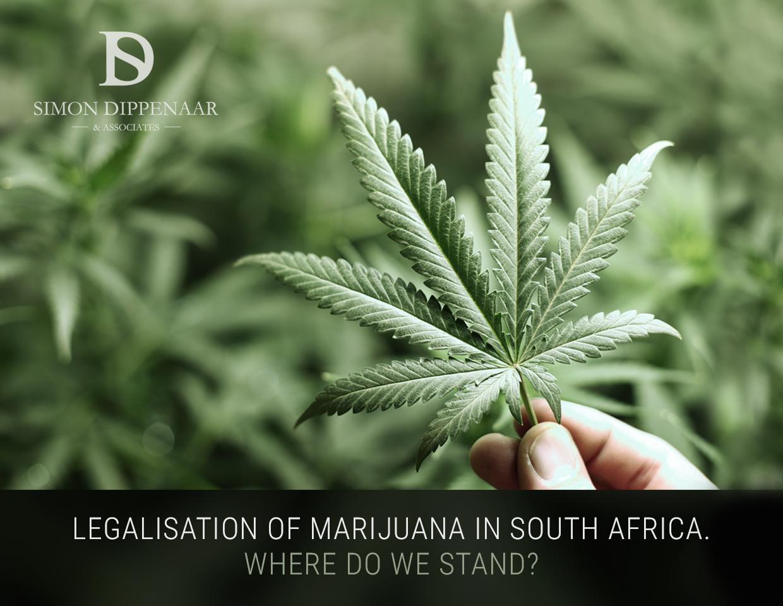 Marijuana Legalisation South Africa