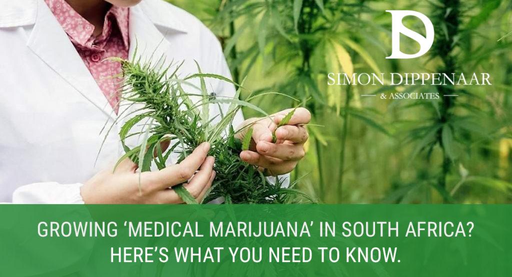 Growing Medical Marijuana South Africa