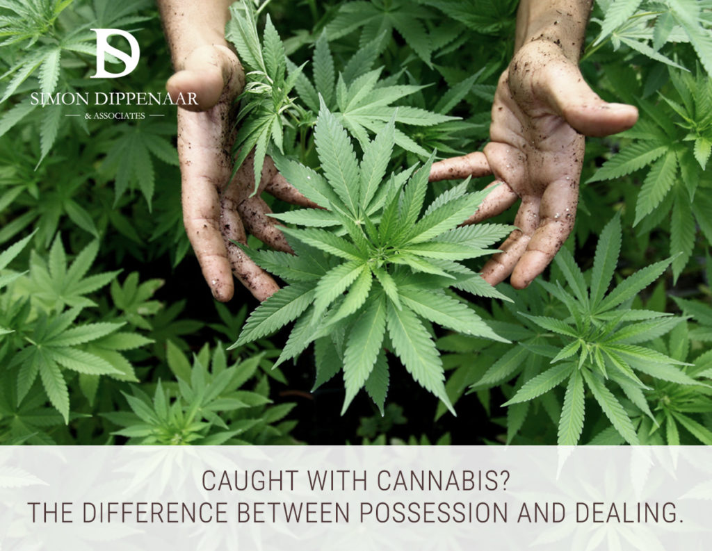 Cannabis possession vs dealing