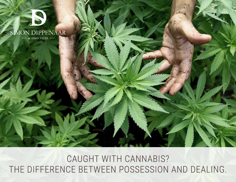 Cannabis possession vs dealing